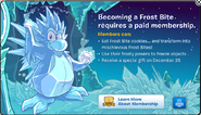 Member Frost Bite