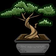 Bonsai Tree sprite 001