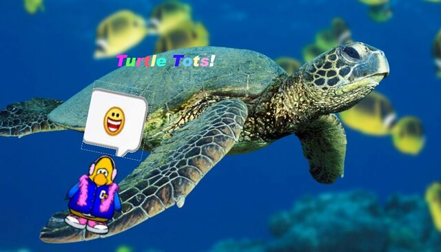 File:Turtletotslogo.jpg