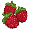Raspberries-icon