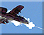 Gen1 A-10 Strike 1 Icons.png