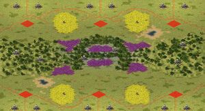 YR Map Arena 33 Forever