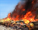 File:Gen1 ZH Burning Barricade Icons.png
