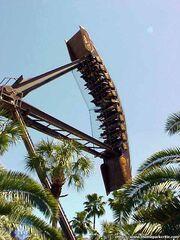 Phoenix Busch Gardens Tampa