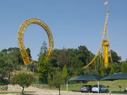 Golden Loop Vertical Loop Spike