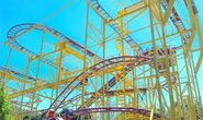 Wild mouse at lagoon again