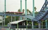 Orca Coaster 3