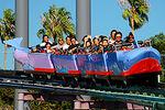 Dolphin Coaster New Trains
