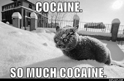 File:Cocaine So Much Cocaine.jpg