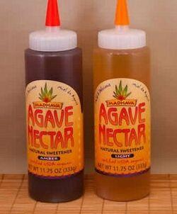 Agave Nectar 02
