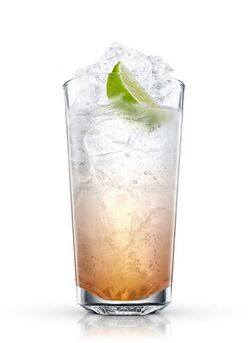 Rum and Tonic 13