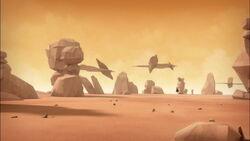 Desert Sector in Evolution