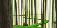 Forest Sector/Gallery: Season 2