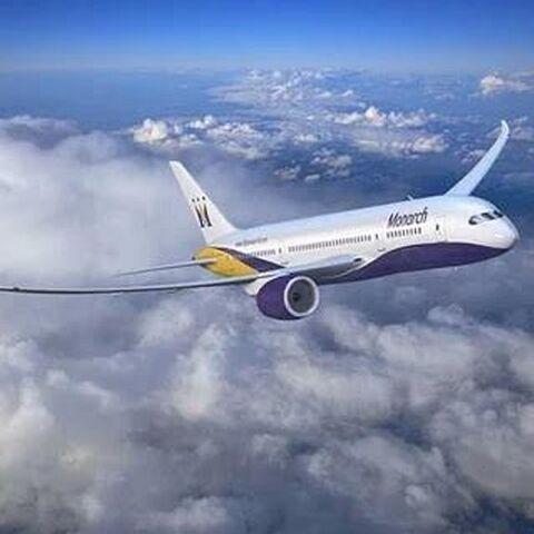 The plane.