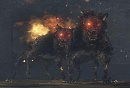 ZOMBIE DOG TEATHER