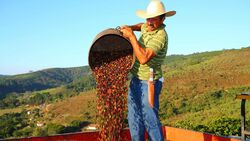 Mexicanxcoffee-20-1600x901-41