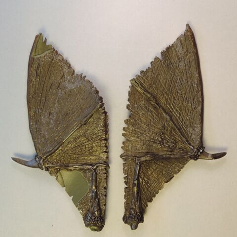 File:Dragon wings 2.jpg