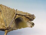 Dragon wings 11