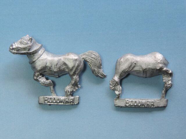 File:Bood Pony 4.jpg