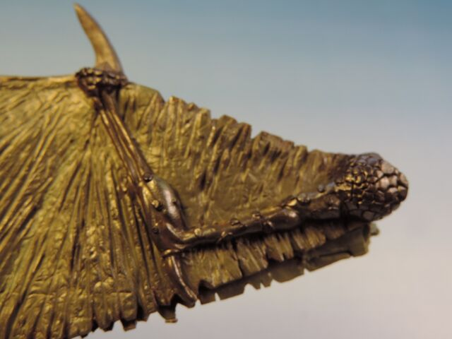 File:Dragon wings 12.jpg