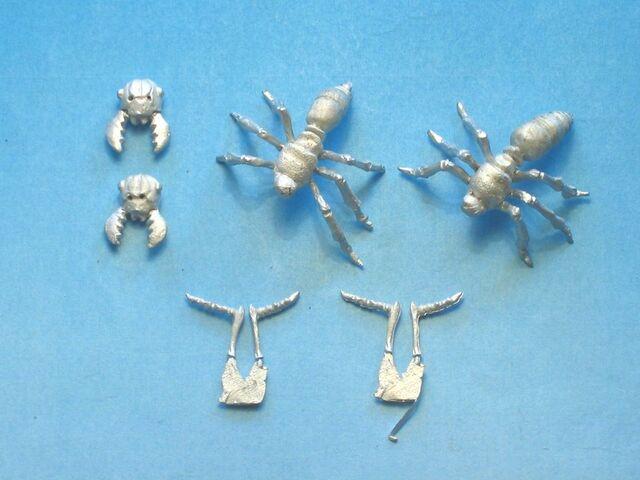 File:OW DV6b Giant Soldier Ants bits.jpg