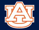 Auburn Tigers Alternate White Orange-White trim AU Logo