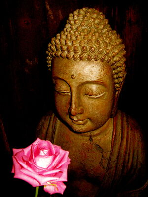 Buddha-8362