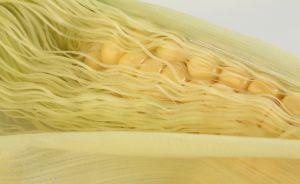 147135 corn