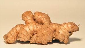192205 ginger