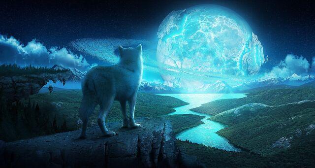 File:Water-wolves-wallpaper-1.jpg