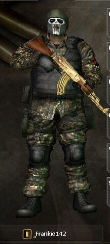 File:Combat-Arms 124.jpg