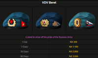 VDV Beret1