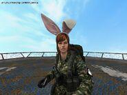 Bunny Ears Characters 14