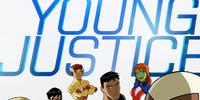 DC COMICS: Young Justice TAS