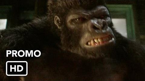 DC COMICS: CW Flash (s2 ep07 Gorilla Warfare)