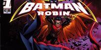 Batman and
