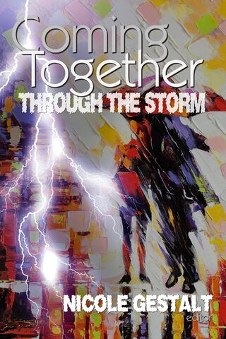 File:Through the Storm.jpg