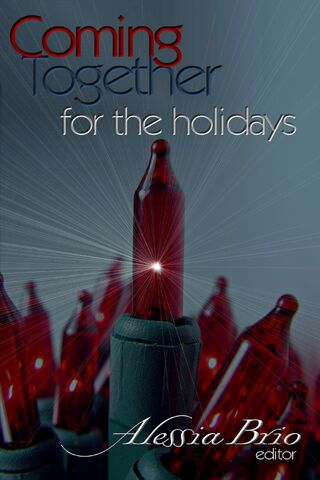 File:For the Holidays.jpg
