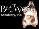 File:Bat World.jpg
