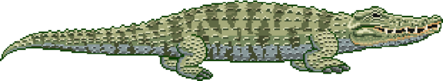 File:Crocodiles Position.png