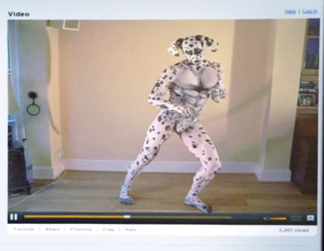 Dalmatian video