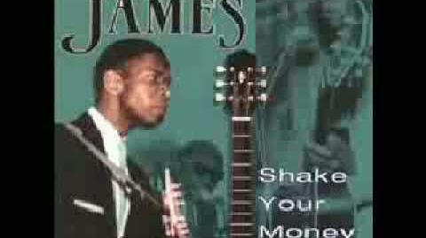 Elmore James - Shake Your Money Maker