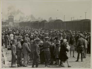 File:Selection-Auschwitz-1944.jpg