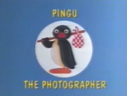 Pingu the Photographer