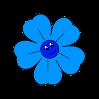 New Coldflower