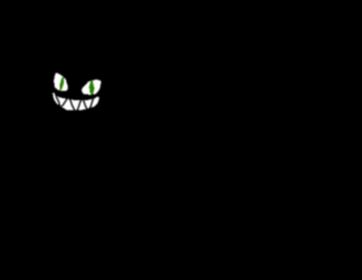 Invisicat2