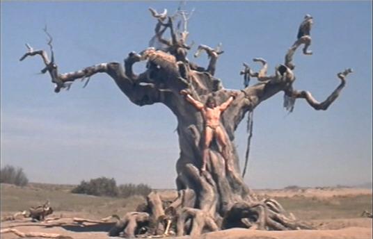 File:Tree of Woe.jpg