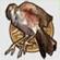 File:Bronzebird.jpg