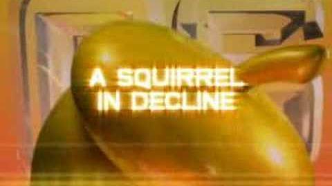 Conker Celebrity Squirrel