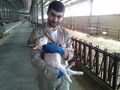 Thumbnail for version as of 12:57, August 21, 2016